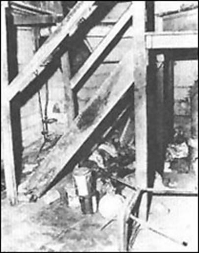 baniszewski-basement.jpg
