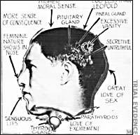 Loeb-Phrenology(200)