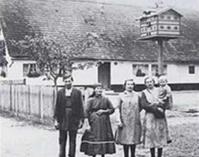 1. Οικογένεια Gruber
